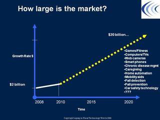 MarketSize
