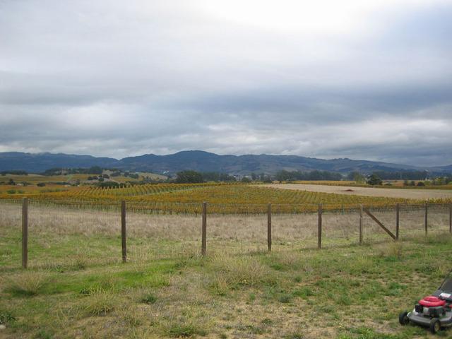 Carneros_inn_landscape_1